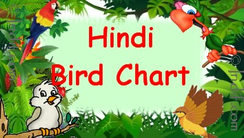 Hindi Birds Chart for kids