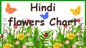 Hindi Flowers Chart for kids